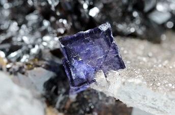 KU Minerals